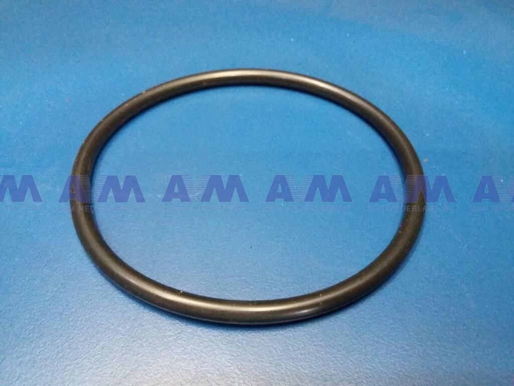 O-ring L-62304-34 PPM